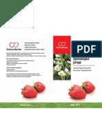 Tehnologija proizvodnje jagode