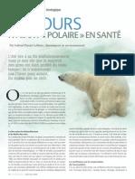 Des ours n'ayant « polaire » en santé