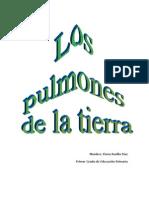 Secuencia Huerta PDF
