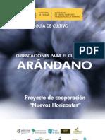 Guia Del Arandano