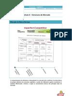 Economia - Capítulo 06 (Estruturas de Mercado)