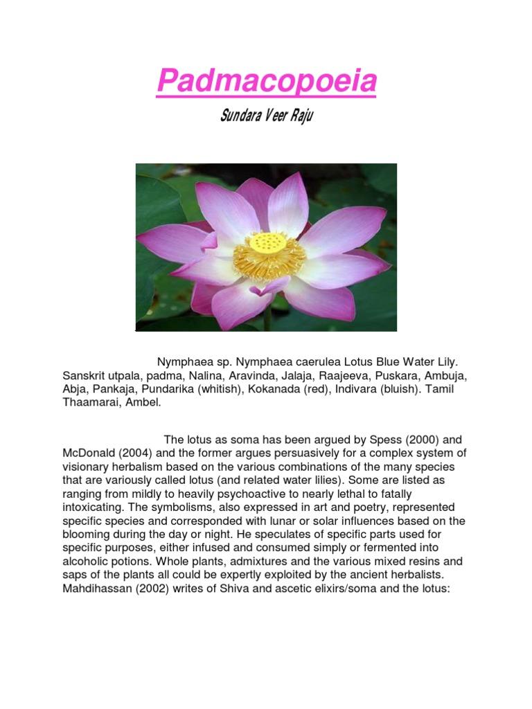 Padma Lotus Flowers Psychoactive Drugs