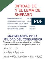 trabajodemicrolemadeshepardidentidadderoy-100602152645-phpapp02