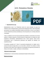 Diphyllobothrium Spp