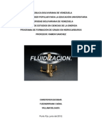 fluidizacion