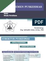 Manajemen Puskesmas-dinda Feraliana_0607101050064