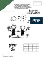 1° ex diagnostico-THE WICH