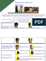 El Labrador Retriever Dena