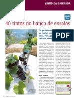Vinho Tinto Da BairradaPT297Dez08