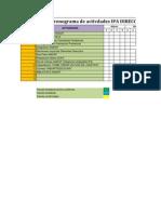 Cronograma de Actividades DD IPA 2012