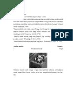Materi Sampah RT-TPA (1)