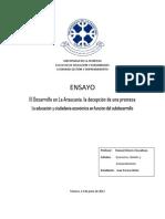 El desarrollo en la Araucanía, la desepción de una promesa