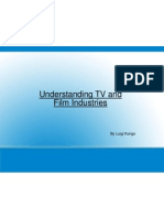 Understanding TV and Film Industries - Luigi
