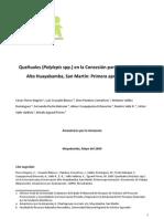 Queñuales (Polylepis spp.) en la Concesión para Conservación