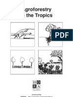 Agroforestry in Tropics