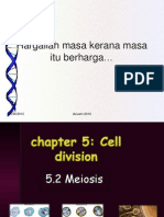 Chapter 5.2 Meiosis
