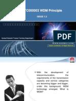 Wdm Principle Issue1.3