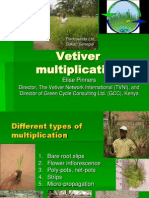 GCC - Vetiver Multiplication