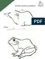 5 Dibuixaelqueli Falta