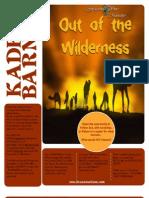 Out of the Wilderness - Kadesh Barnea