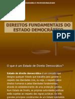 1254255917 Direitos Fundamentais Do Estado[1]