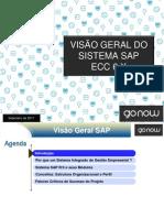 Visão Geral SAP