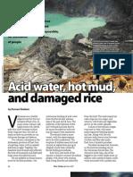 RT Vol. 6, No. 2 Acid water, hot mud, and damaged rice
