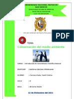 Conservacion Del Medio Ambiente- Monografia
