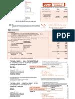Bruce & Darlene Schwichtenberg 2009 Property Tax Statement