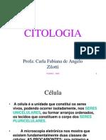 Cito 1