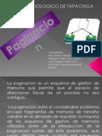 Expocision de Paginacion