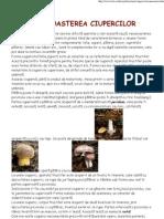 recunoasterea ciupercilor