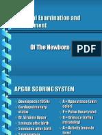 Newborn Pa