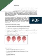 61816915 Case Study Edited