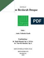 Referat Dbd Anita