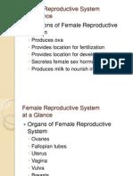 reproduksi 2