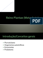 Reino Plantae (Metaphyta)