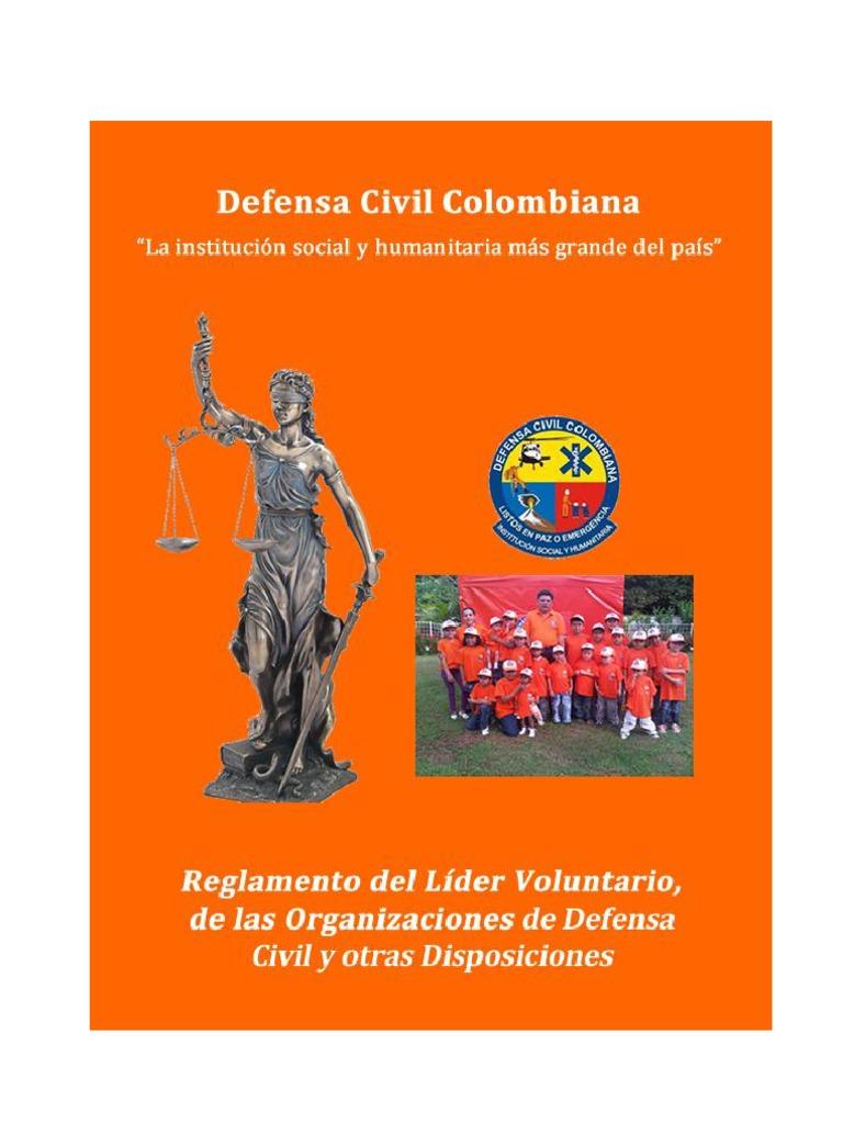 MR 11 Nuevo Reglamento Del Lider Voluntario y Las Organizaciones de ...