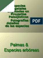 Especies & proyectos