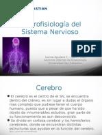 NeurofisiologiaSNC - FINAL