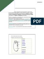 Semilla PDF