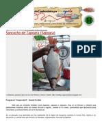 Sancocho de Sapoara