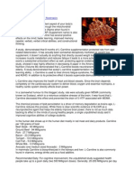 Acetyl-L-Carnitine Supplements