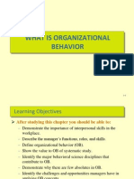2-Introduction to Organizational Behavior