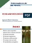 0. Fundamentos biol+¦gicos