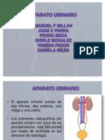 riñones radiologia