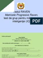 725 Testul Raven 2f