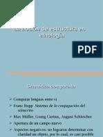 La noción de estructura en etnología