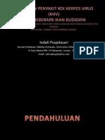 pp SA