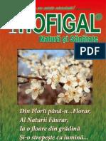 Revista Hofigal Nr 17